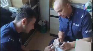 Policjanci uratowali kotki