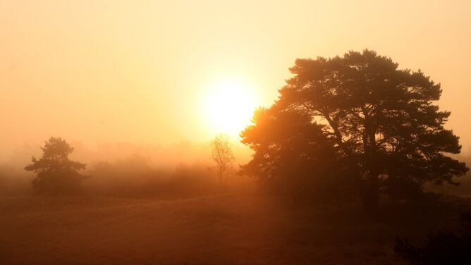 Pogoda na dziś: słoneczna aura, <br />od 20 do 27 stopni