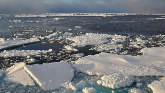 W Arktyce jest coraz mniej lodu. <br />Jego pokrywa jest rekordowo niska