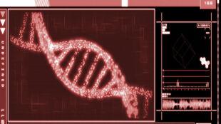 DNA zawdzięczamy imigrantom z Bliskiego Wschodu