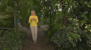 Nasz ogrodowy pamiętnik (odc. 700 / HGTV odc. 1. s.3)