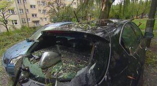 Drzewa upadły na dwa samochody w Poznaniu