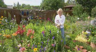 Ogród utkany z kwiatów i ziół (odc. 621)